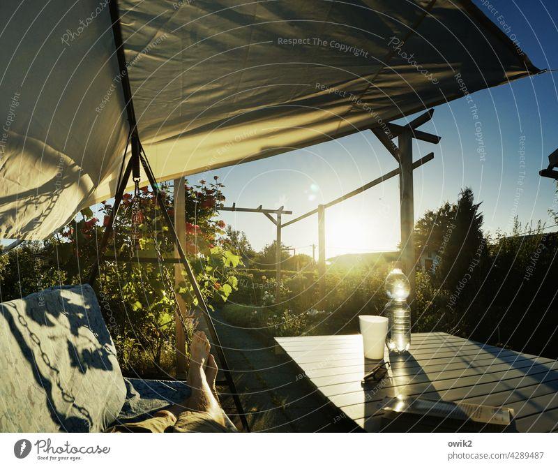 Feet high Garden Terrace Relaxation Serene To enjoy Illuminate Glittering Back-light Siesta Break Appealing Detail Day Light Light (Natural Phenomenon)