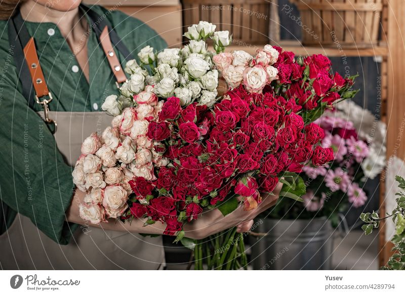 Woman florist is holding a large bouquet of roses. Florist workplace. Small business concept. Flowers and accessories shop. Close-up beautiful woman make gift