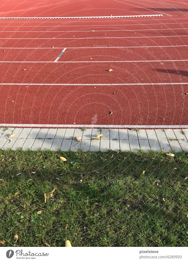 Sports field in autumn Sporting grounds Running track Sporting event Sunlight Green Red Sports facility empty stadium Football stadium Football pitch