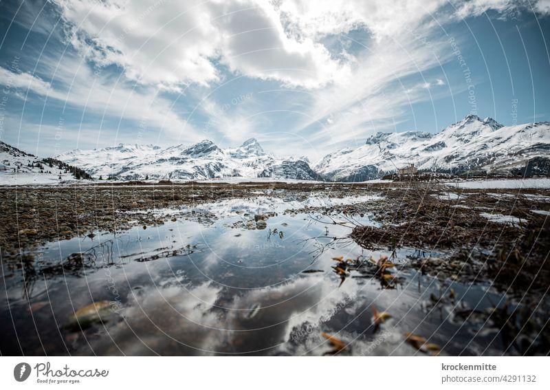 high alpine moor landscape on the alp Flix in Switzerland Alp Flix Grisons Alps Mountain Exterior shot Sky Day Canton Graubünden Peak Environment