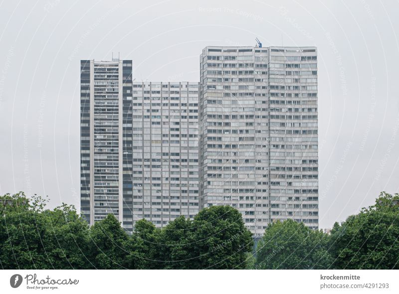 Paris - Housing complex in the 15th arrondissement with trees Residential complex Europe France Architecture Capital city Colour photo Deserted