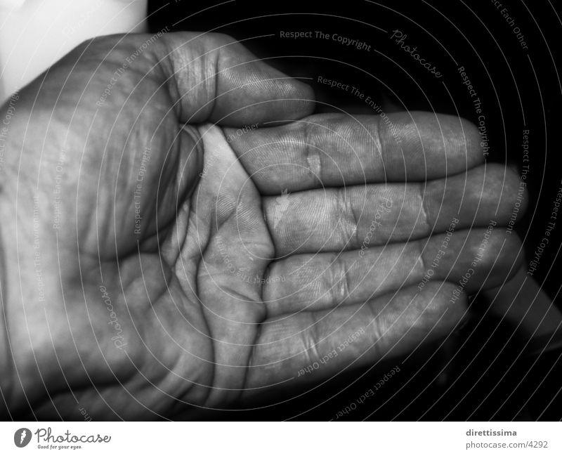 Man Hand Fingers