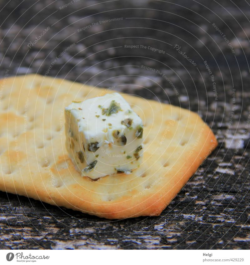 picnic Food Cheese Dough Baked goods crackers Nutrition Picnic Vegetarian diet Eating Lie Esthetic Exceptional Fresh Healthy Uniqueness Small Delicious Brown