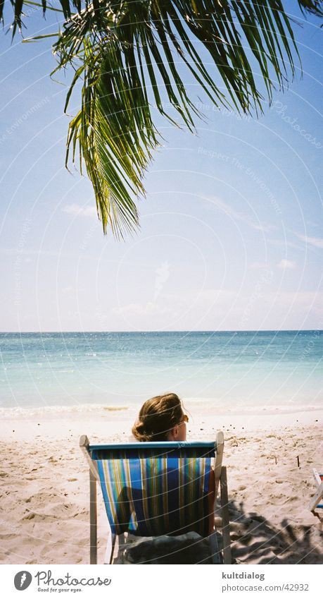 Woman Sky Sun Ocean Beach Vacation & Travel Relaxation Palm tree Paradise Thailand Deckchair Los Angeles