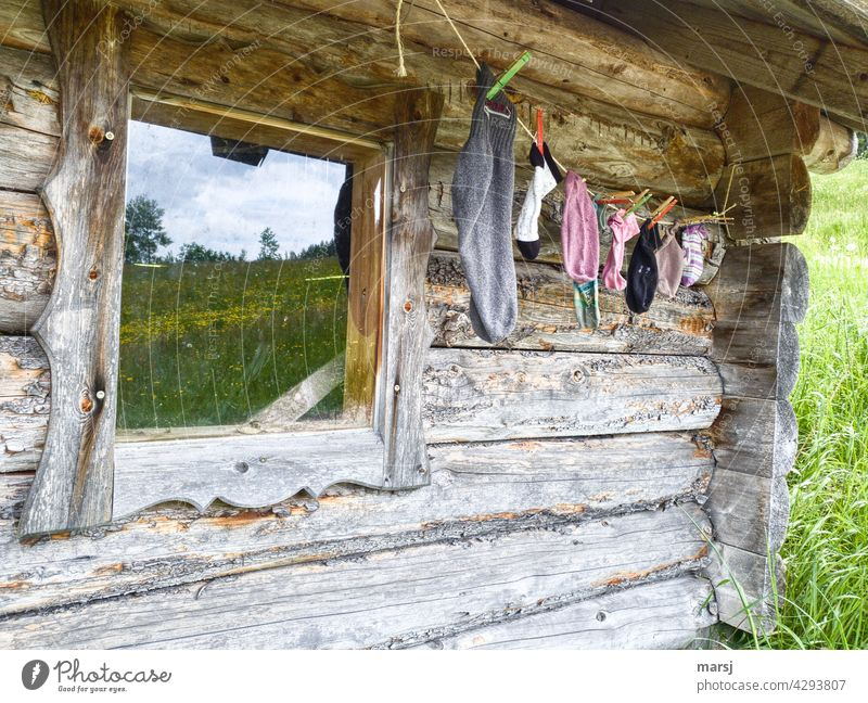 The single sock hiking trail begins here, at this old, weathered cabin. Hut Wooden wall Window Wall (building) Idyll idyllically Rustic Solid alpine hut