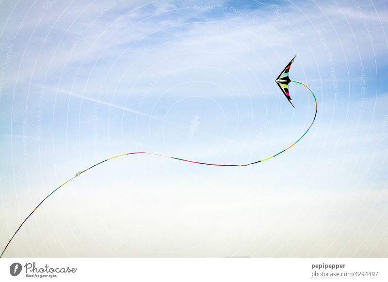 colourful kite Hang gliding kites Kite festival fly a kite climb the kite hang gliders Sky Flying Leisure and hobbies Dragon Joy Blue Wind Playing Air Autumn