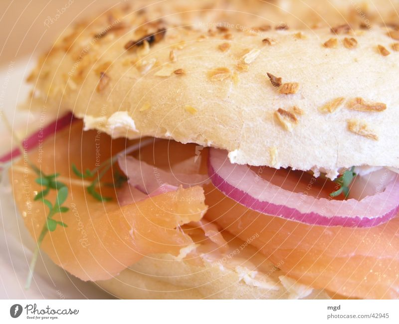 Nutrition Healthy Food Fish Dish Delicious Roll Meal Onion Butter Cress Salmon Bagel