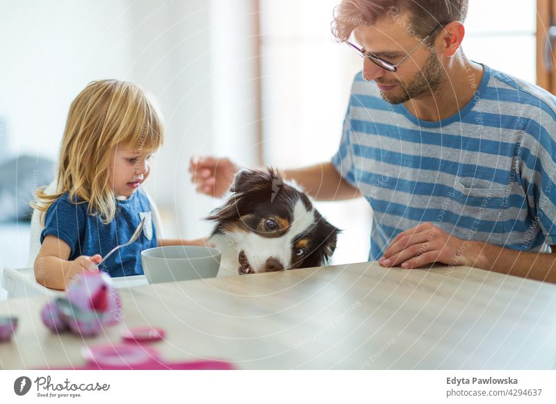 Everyday life at home with dog house man dad father family parent relatives child daughter girl little girl kid kids children relationship together togetherness