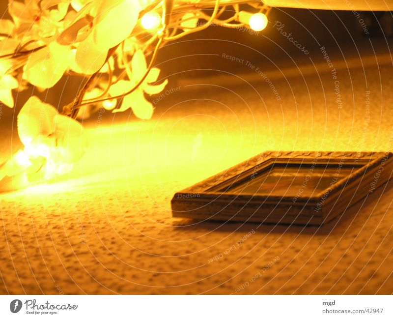 Yellow Wall (building) Blossom Photography Image Living or residing Wallpaper Frame Picture frame Fairy lights