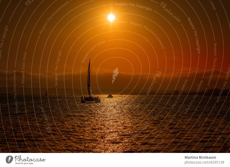 Sunset behind the silhouette of a sailboat catamaran in San Diego san diego pacific evening sunset rigging sky sea dusk sunlight high cloud outdoors