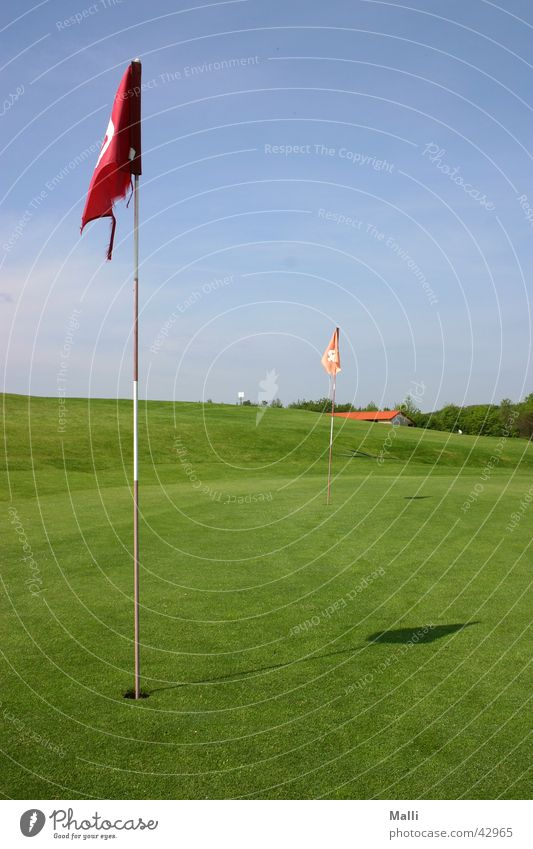 golfers green Golf course Flag Green Sports Blue Sky Hollow fetch