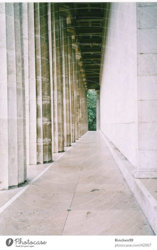 farsightedness Green Vanishing point Vantage point Regensburg Walhalla Architecture Column Stone Lanes & trails Corridor