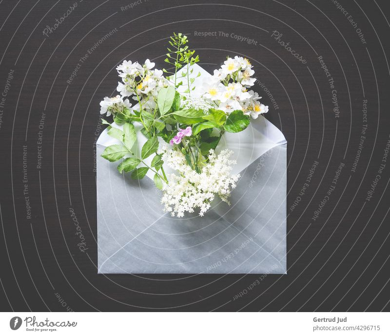 Envelope with a bouquet of spring flowers on a black background Flower Flowers and plants Blossom Still Life Plant Nature Colour photo Spring Summer Close-up