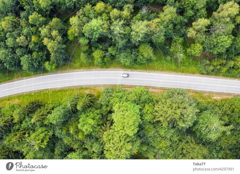 The trip Street Forest vacation Trip Road traffic Green Nature Driving excursion to the green aerial photograph