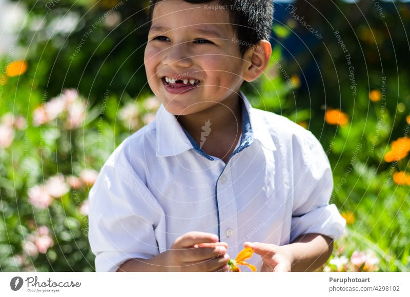 Little boy with a daisy in his hand and laughing summer spring happy flower outdoor cute little smile field toddler kid grass yellow small child blond nature