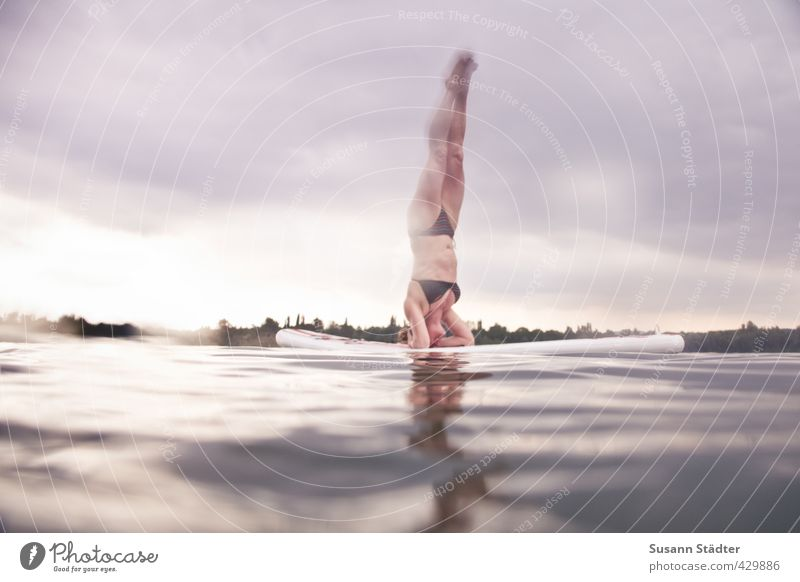 SUP | Headstand Sports Fitness Sports Training Aquatics Swimming & Bathing Swimming pool Feminine Woman Adults Body 1 Human being Water Drops of water Sky Waves