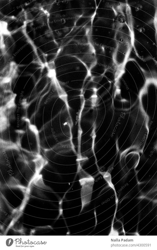 Water and Light Analog Analogue photo B/W Black & white photo black-and-white reflection Light Reflection Pattern Abstract White Exterior shot Nature Wet