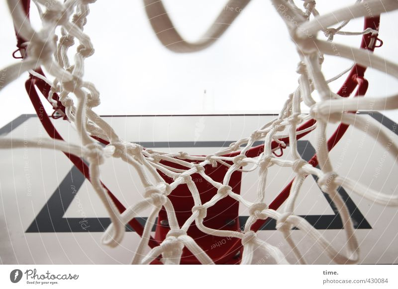 All good things come from above Sports Ball sports Basketball basket Basketball arena Net Sporting Complex Athletic Round Experience Expectation Joy Accuracy
