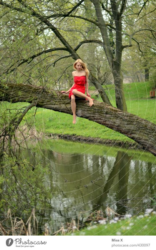 red on green Human being Feminine Young woman Youth (Young adults) 1 18 - 30 years Adults Nature Spring Summer Tree Park Forest Bog Marsh Pond Lake Dress Blonde
