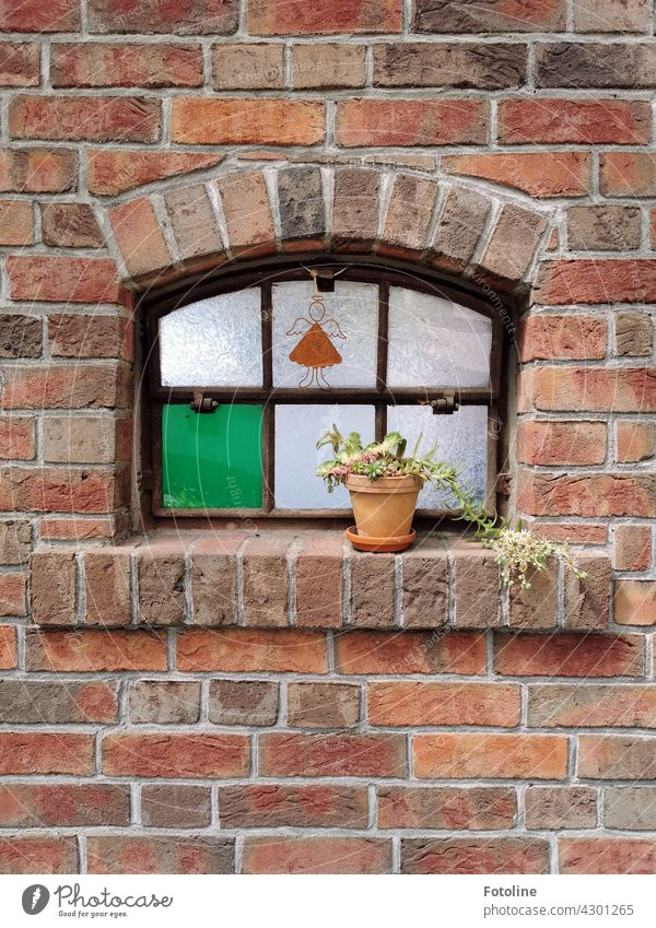 An extraordinary window with lovely details caught Fotoline's attention. This little angel, the flower pot and the single green pane are already a great combination.