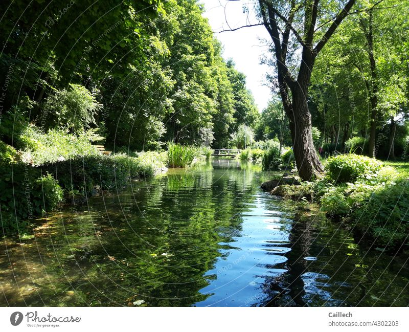 Idyllic pond in a quiet park Pond Park Summer Freedom free time tranquillity harmony Peaceful trees Blue Green wide Weather Exterior shot Colour photo