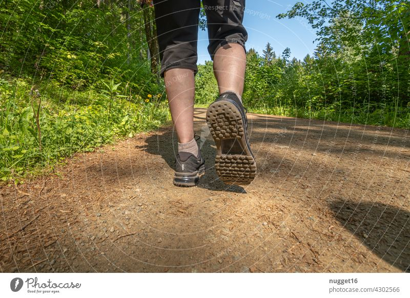 wandering woman on a forest path Hiking travel voyage Nature Landscape Mountain Vacation & Travel Exterior shot Colour photo Tourism Travel photography