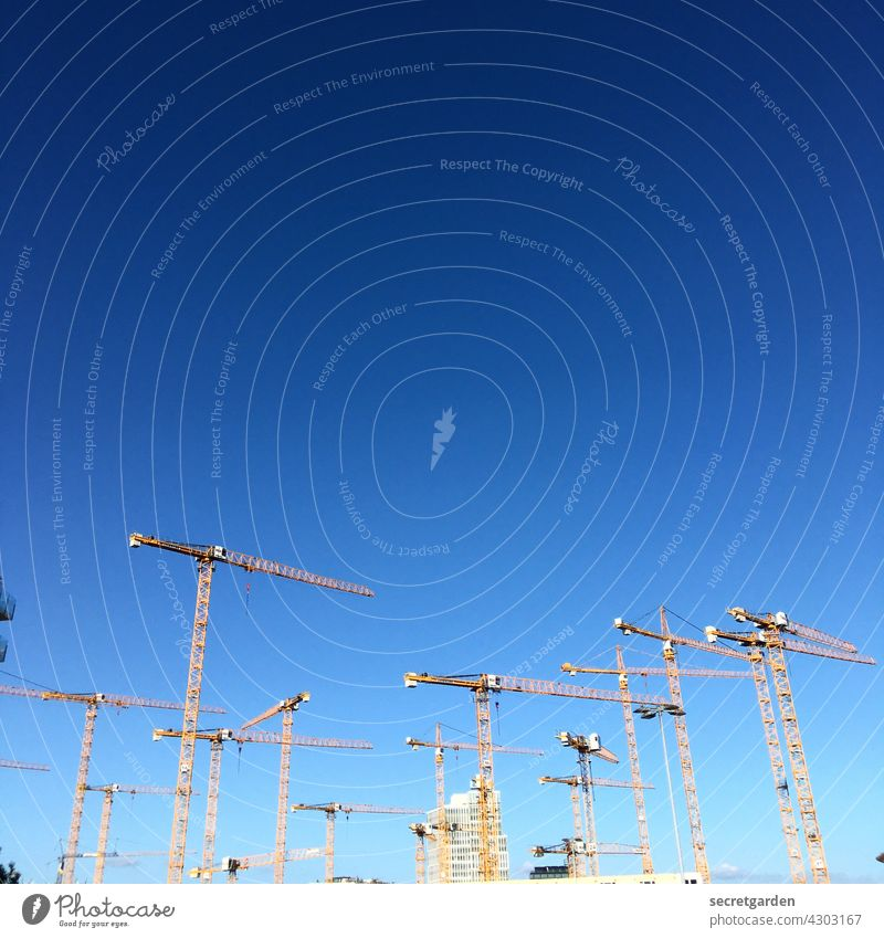 Everybody's looking in one direction. Crane cranes Many Sky Minimalistic Beautiful weather Work and employment Architecture Exterior shot Construction site