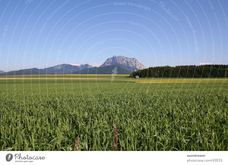 Mountain Large Salzkammergut