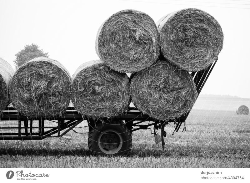 Harvest time. A few bales of straw are already loaded onto the wagon. The field is harvested.  . Agriculture Field Sky Autumn Bale of straw Hay bale Landscape