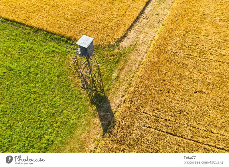 The high seat Hunting Blind hunting Animal Wild animal Aerial photograph acre Farm