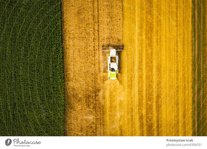 A modern combine harvester working on wheat field, aerial view business summer nature industry technology ripe crop agriculture harvesting grain rural tractor