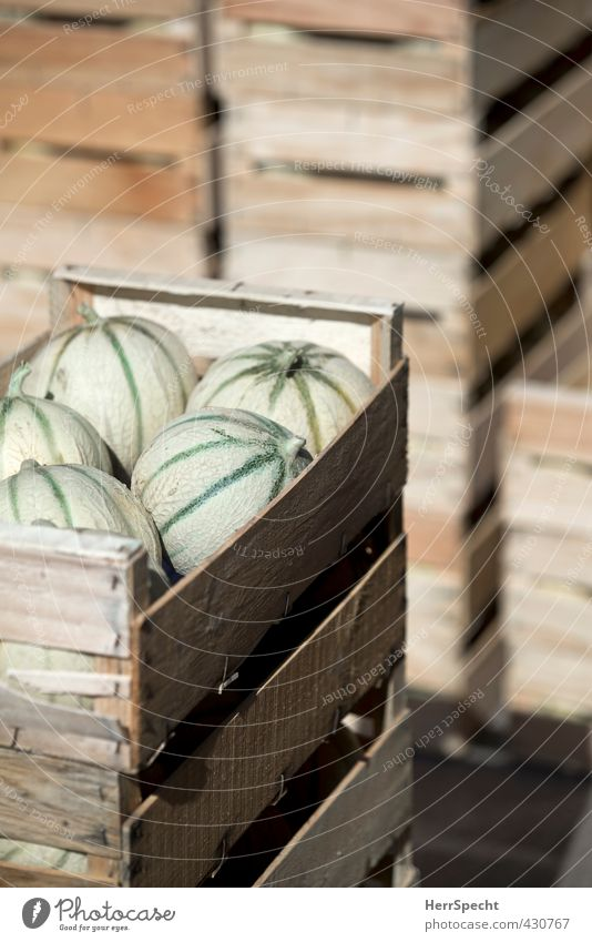 A load of melons Food Fruit Nutrition Packaging Wood Fresh Sweet Brown Green Melon Cantaloupe melon Honeydew Box of fruit Wooden box Arrangement Stack Delivery