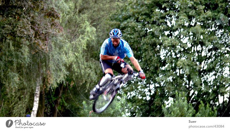 bunny shop Green Bicycle Blur Tree Extreme sports Blue