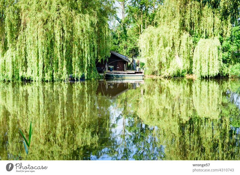 Interspaces   in nature THEME DAYS Spaces Nature River bank Warnov Warnowufer reflection Relaxation retreat Water Exterior shot Colour photo Sky Reflection
