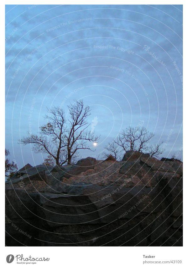 helloweed Tree Creepy Clouds Mountain Sky Moon Fear
