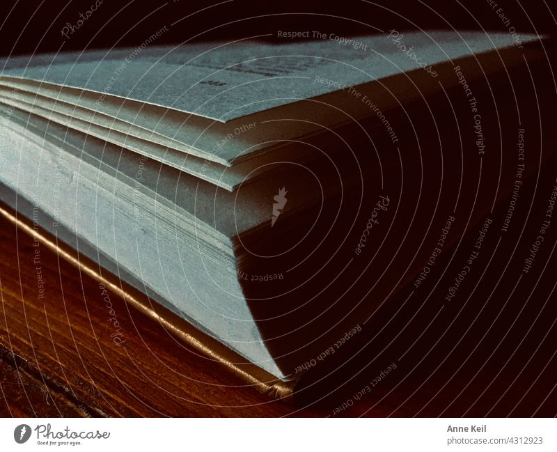 Lying open book with gold band in light and shade. Book Page Paper Literature Reading Light Shadow Education