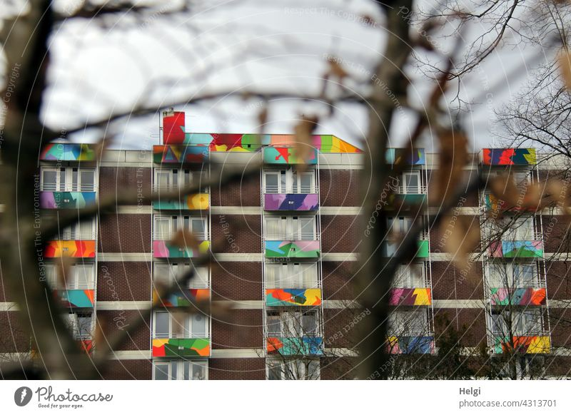 life is colorful - facade with colorful painted balconies behind bare branches House (Residential Structure) Building Facade Balcony Window variegated Painted