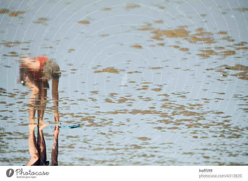 Reflection of a mussel seeker in the mudflats Woman Mussel search Mud flats shell collect Mussel shell coast Low tide High tide ebb and flow Wet Island Sand