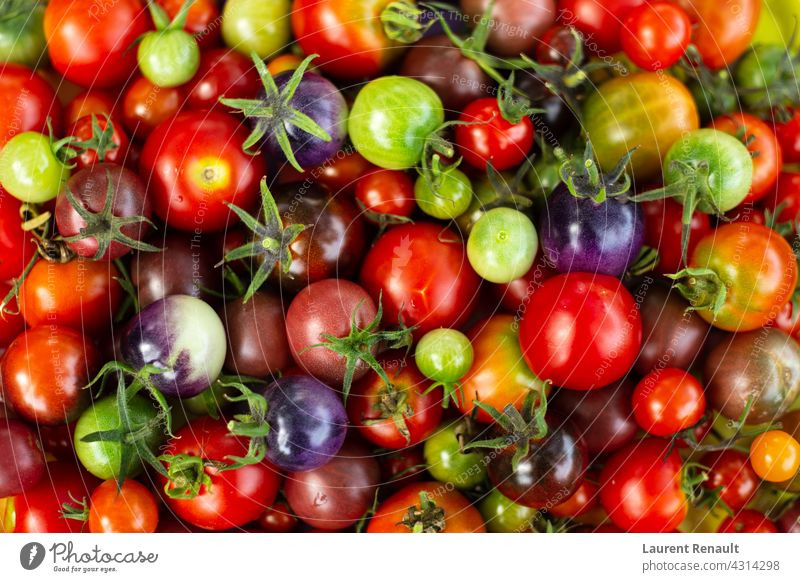 Set of colorful cherry tomatoes Raw agriculture background colors crop diet food gathering health healthy ingredient organic set vegetable
