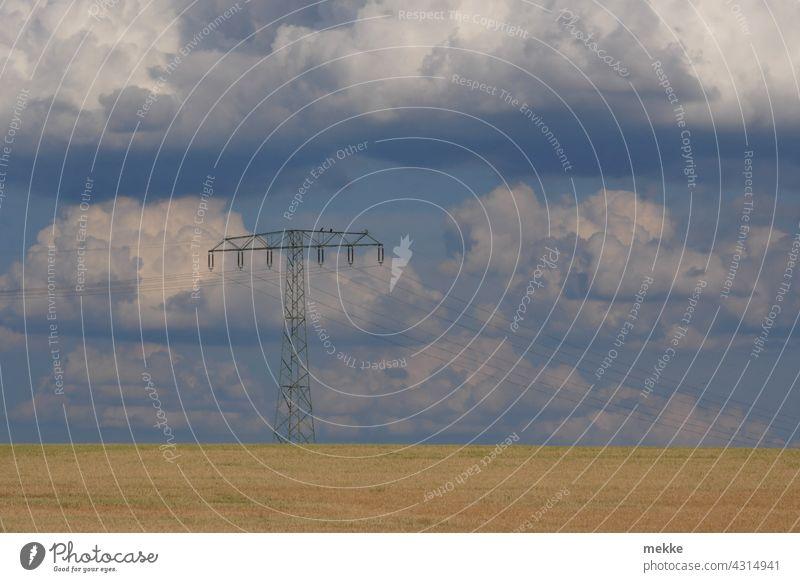 Power line over summer grain field against cloudy sky Electricity pylon power line Energy High voltage power line Energy industry Environment Energy crisis