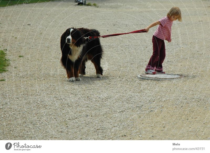 Woman Child Girl Dog Rope To go for a walk Pull Rip Going