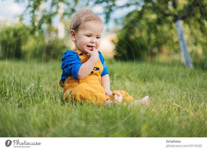 Happy charming baby boy in fashionable clothes sitting on the grass in the garden on a summer day child happy cute adorable kid green fun park meadow nature