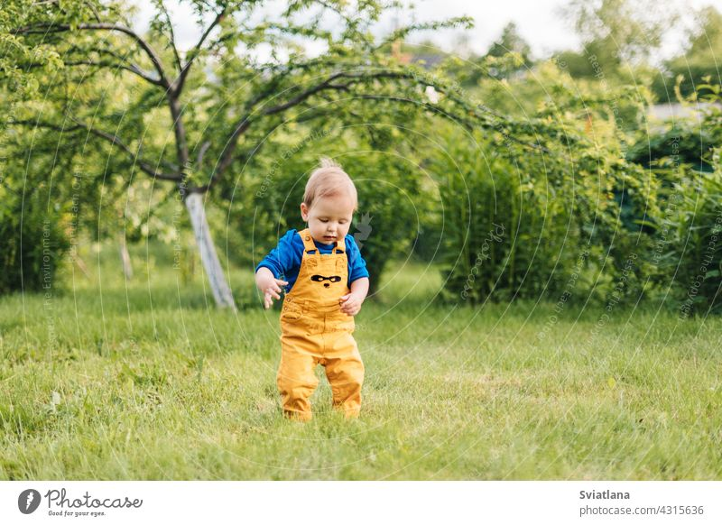 Happy baby outdoors, toddler walks in the summer garden kid boy smiling happy casual laughing steps toddlersmile fun cute cheerful spring park childhood