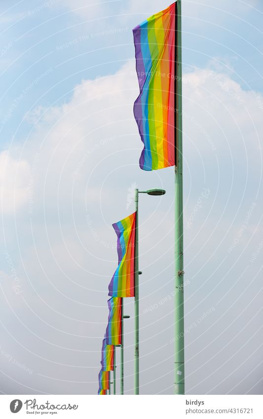 Many rainbow flags in a row. Symbol for gender justice, queer people, lesbians and gays, diversity and respect. Rainbow Flags Homosexual Respect