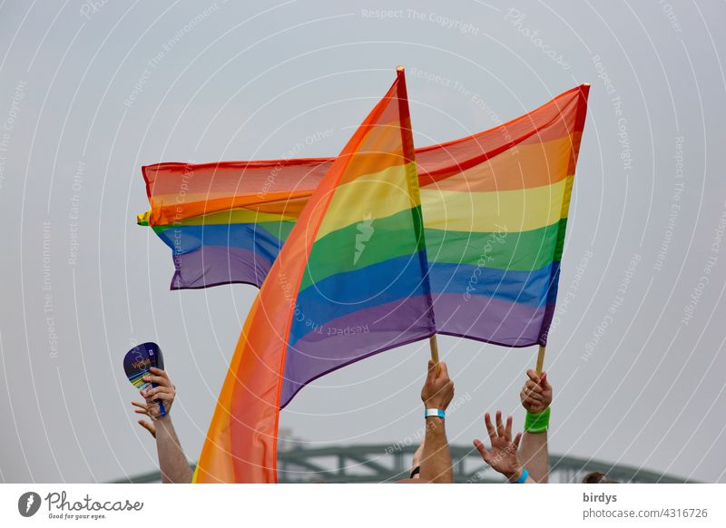 People wave rainbow flags Rainbow Flags hands Swing Prismatic colors queer Homosexual Rainbow flag Love Tolerant variety Respect Equality Freedom