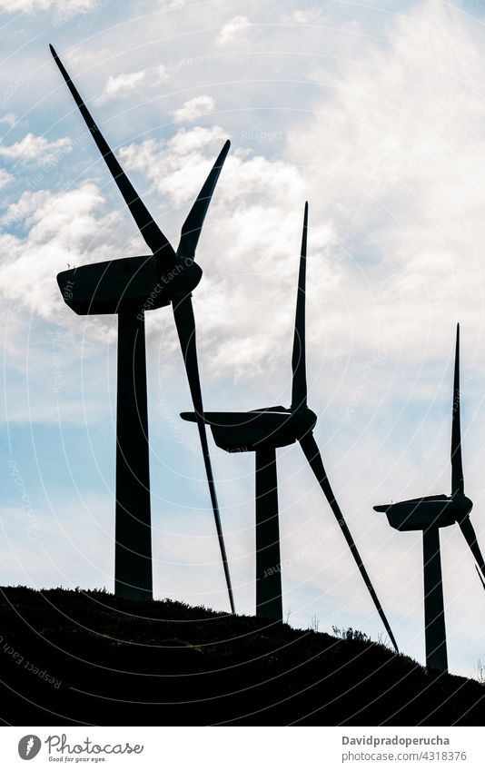 Windmills producing alternative energy in green meadow windmill renewal ecology generator resource sustainable conserve power electric row nature turbine rural