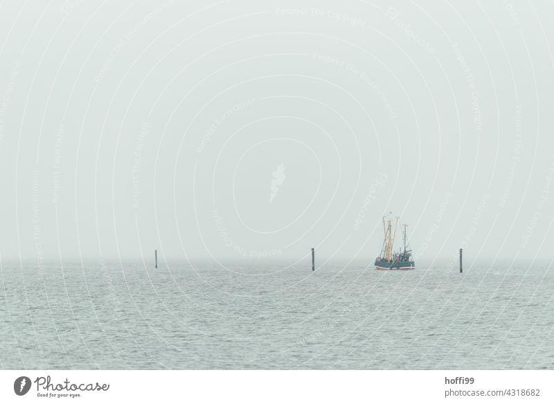 a fishing boat leaves the harbour in hazy weather Fishing boat Boating trip Fishing (Angle) Deep-sea fishermen Fog Shroud of fog coast Navigation Ocean Waves