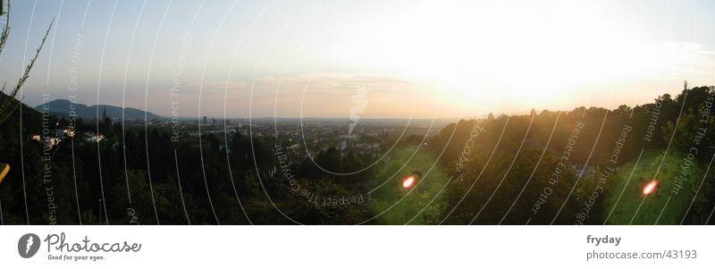 City Mountain Large Panorama (Format) Münster Vineyard Freiburg im Breisgau