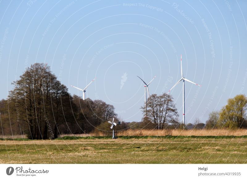 offspring ;-) - on a meadow is a mini wind turbine, behind trees in front of a blue sky are three big wind turbines Pinwheel Wind energy plant stream