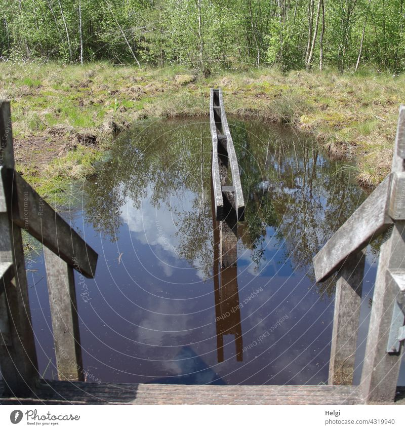 Water treading facility in the moor Bog Moor Water tread water water treading pool Stairs rail Wood entry swampy reflection Sunlight Beautiful weather